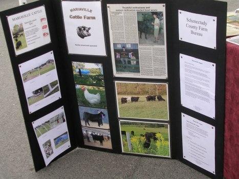 Mariaville Cattle Farm, Schenectady NY